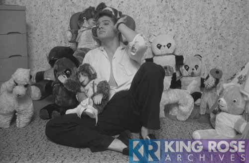 ELVIS PRESLEY - KR KING ROSE