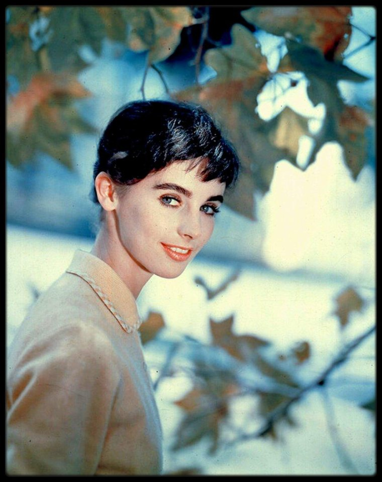 Millie PERKINS