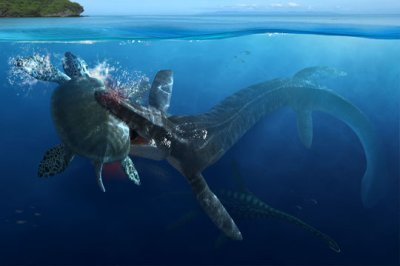 Blog de jurassic tom page 13 jurassic tom - Dinosaure marin carnivore ...