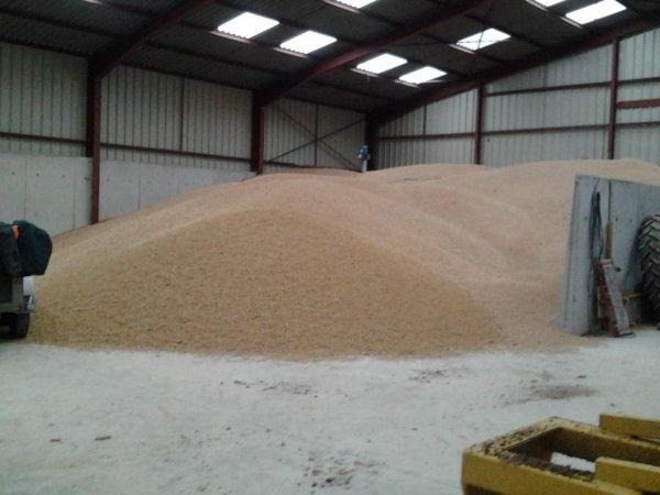 silo à céréale