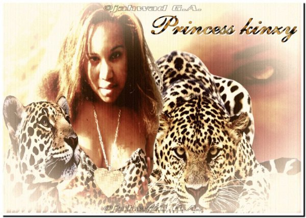 Les photos montages des fans de la Princess Kinzy sur Facebook