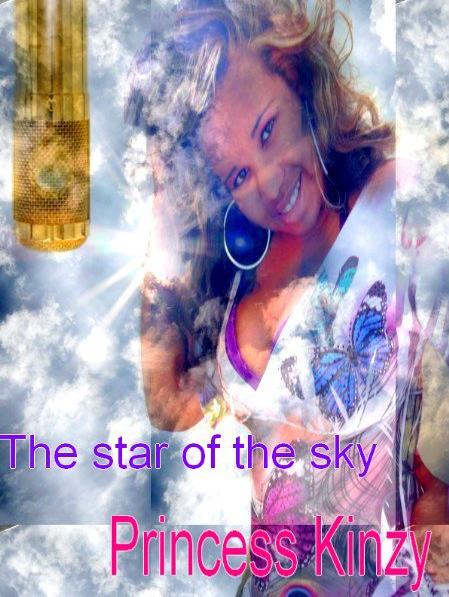 Mes posters 2011 c'est trop drôle lol ! Il faut un début a tous ..Princess Kinzy