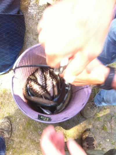 Les 24h de pêche au Carpodrome: Edition 2011