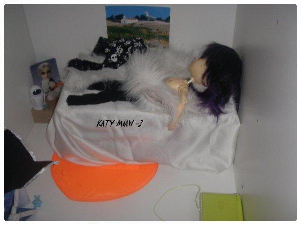 Le sommeil d'un matou <3