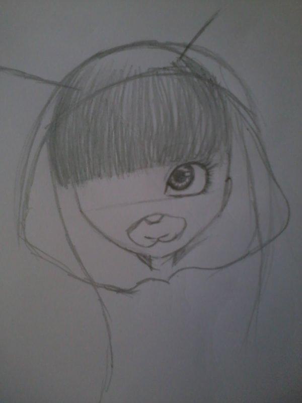 Début d'un dessin de doll 2