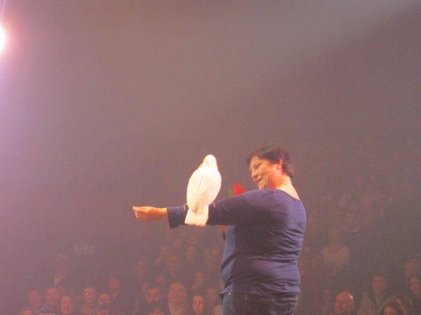 cirque Arlettes Gruss à  La Rochelle , fevrier 2015