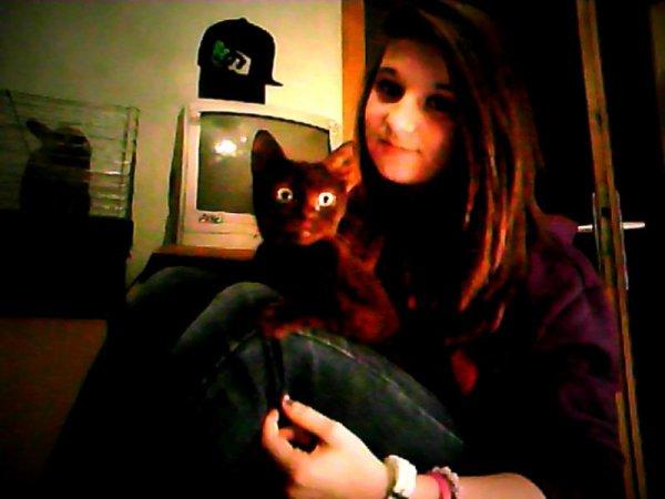 mon chaton et t'é yeux de crocro je t'aime <3 !!
