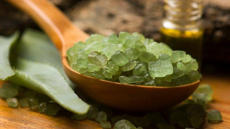 Le cactus, un produit de beauté miraculeux mais très peu connu !