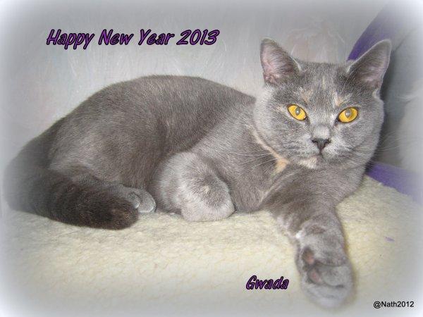Bonne Année - Happy New Year - Best Wensen 2013
