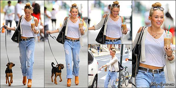 """7 Août 2012 : Miley promenait son chien """"Happy"""" dans les rues de Philadelphie avec une boisson."""