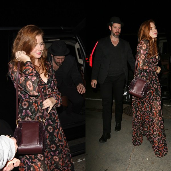 5 Décembre 2015 | Amy et son mari Darren à Private House Party à West Hollywood