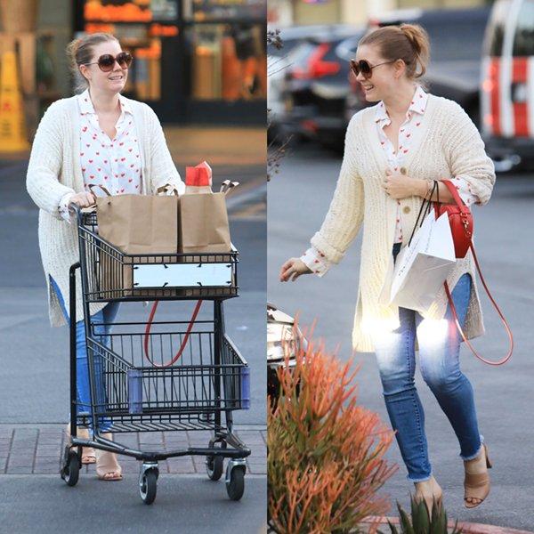 14 Fevrier 2020   Amy en compagnie de Darren à West Hollywood.