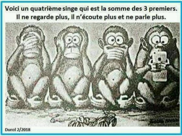 Les 3 singe nouvelle formule