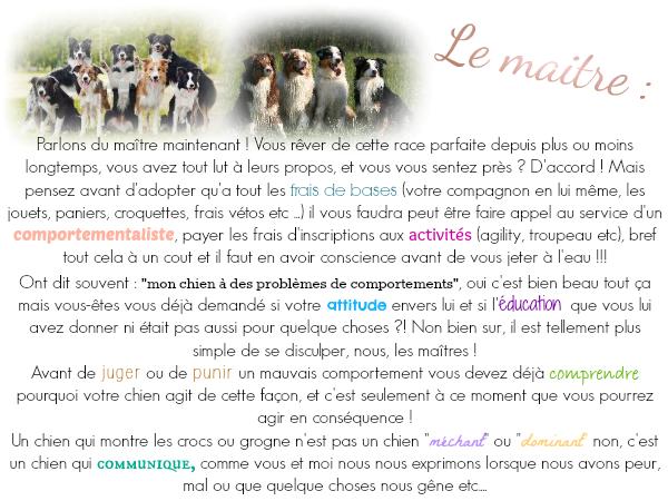 - Article n° 4 -