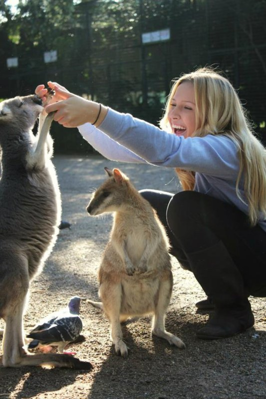 Mes p'tits kangourous ! :)