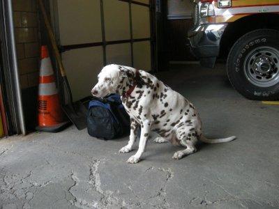 visite fire station soho fdny