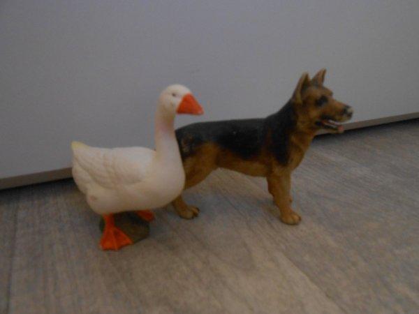 L'oie et le chien.