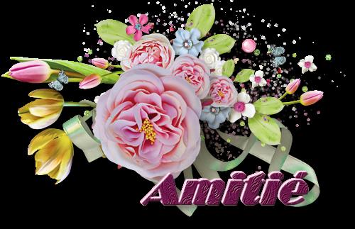 CADEAUX RECUS et pour MON AMIE MARY