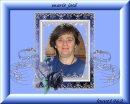 Photo de chat028