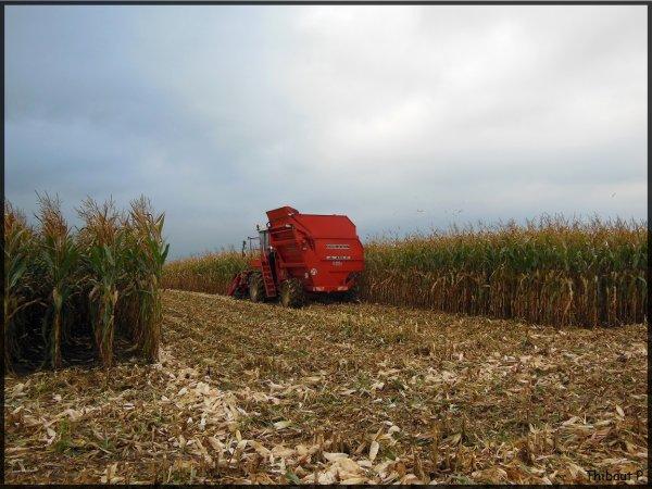Corn Picker - Bourgoin JL 410 D