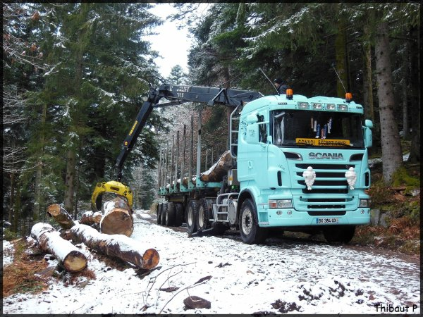 Scania R620 Transport de grumes