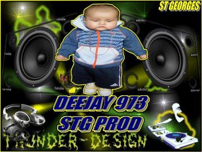 stg prod / DEEJAY 973 MEGA SOUND(2011) (2011)