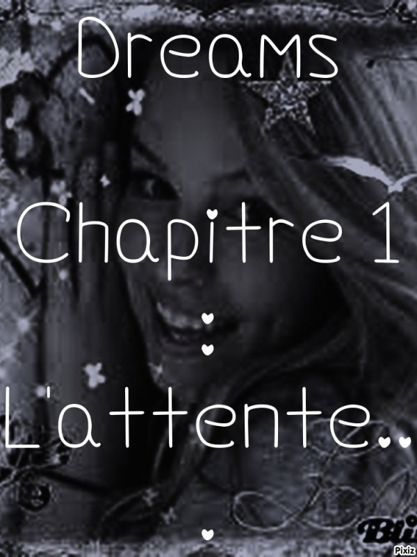 Dreams, Chapitre 1 : L'attente...