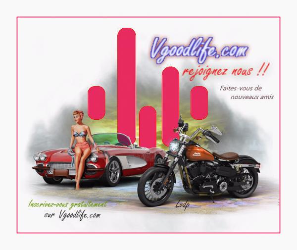 www.vgoodlife.com