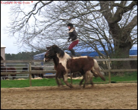 """ Galope poney ! """