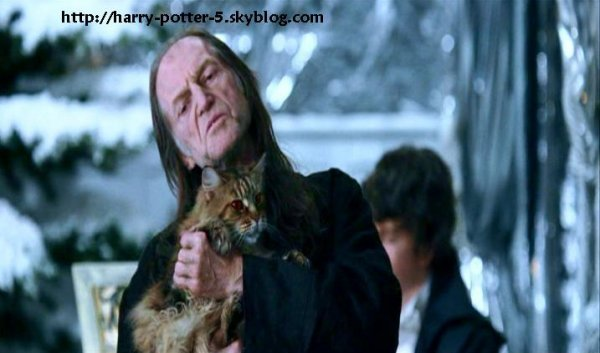 Quelques photos du film 10 tout ce qu 39 il faut savoir - Rusard harry potter ...