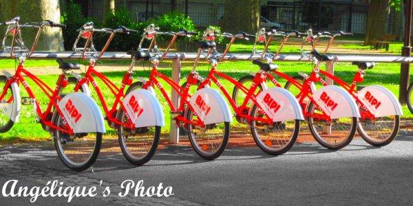 Vélo Bip