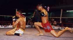 Le Muay Thaï sport national Historique de la société thaïlandaise mon site muaythaitv.com  ET QUELQUES TOFS DE MOI BIENNVENU A TOUS DANS MON BLOG