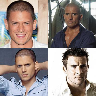 WENTWORTH MILLER CONTRE DOMINIC PURCELL