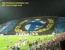 le plus beau des stade