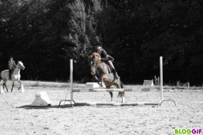 Je monte un merveilleux cheval