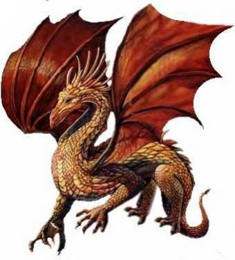 Chapitre 2: Le Dragonnier