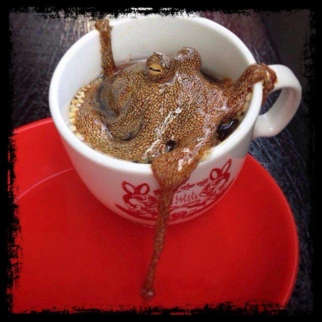 Ptite Pause Café Avant d'Partir Au Taff.......