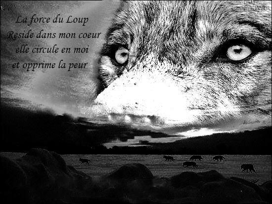Le Loup une grande place pour moi.