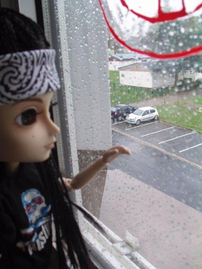Mini Tom regarde le mauvais temp