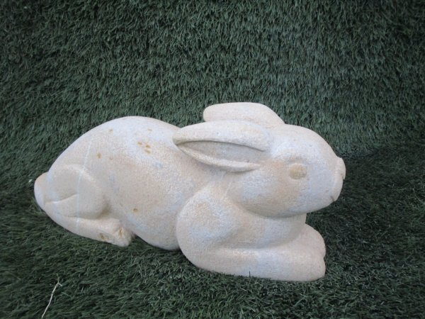 Bunny le lapin blanc