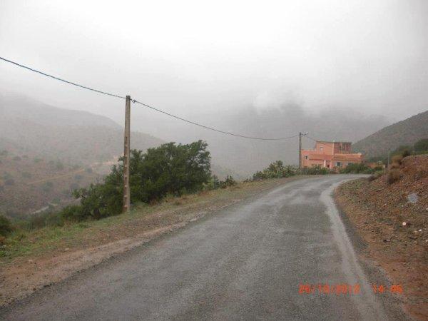 alili tafraout 2013