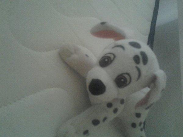 My Dog Chucky
