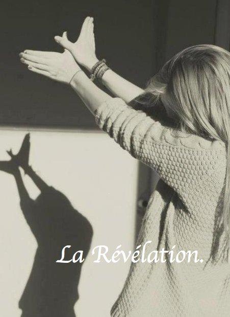 Chapitre 3 : La Révélation.