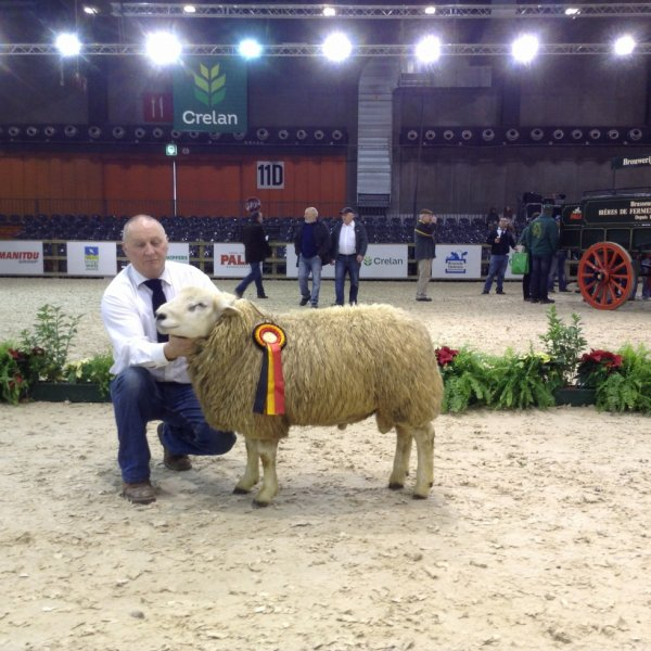 Agribex 2013  Parfait de la commone.