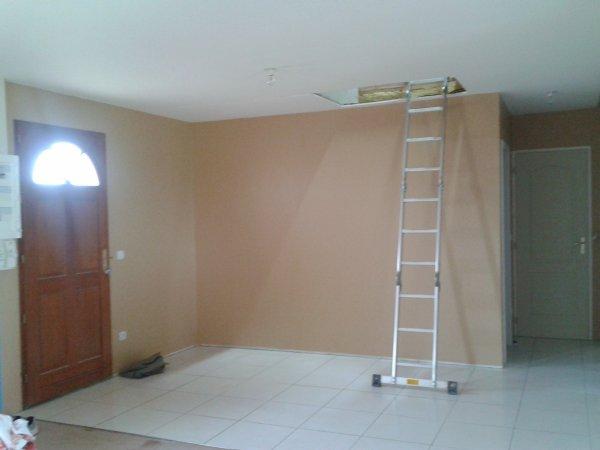 peinture couloir hall entr e notre projet notre maison. Black Bedroom Furniture Sets. Home Design Ideas