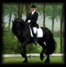 Photo de fiction-frison
