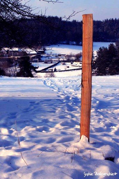 La neige revétie son beau menteau blanc et tout parais plus beau!♥