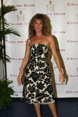 """En 2004, Céline offre un album live """"A New Day... Live In Las Vegas"""" à ses fans, ainsi qu'un album de berceuses pour enfants..."""