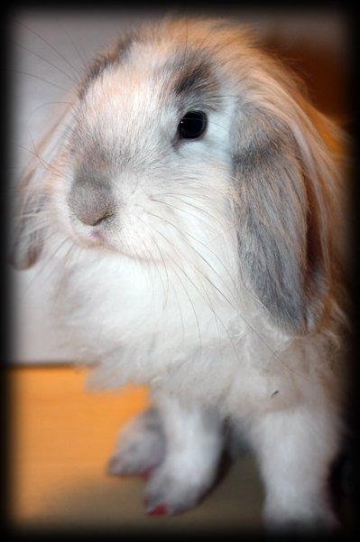 Petite Fanny devient une vraie chipie...comme Kenzie  ;-)
