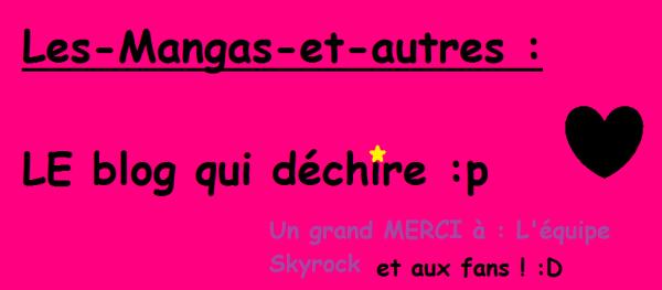 Ptite PUB pour le blog ! ;) ( FAIS MAISON )